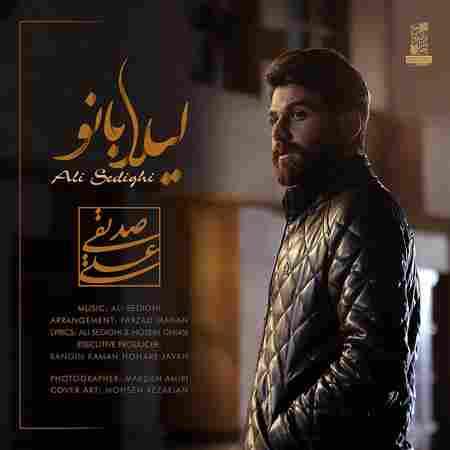 دانلود آهنگ جدید لیلا از علی صدیقی