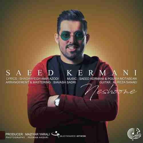 دانلود آهنگ جدید نشونه از سعید کرمانی