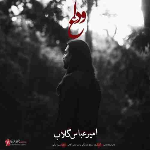 دانلود آهنگ جدید وداع از امیر عباس گلاب