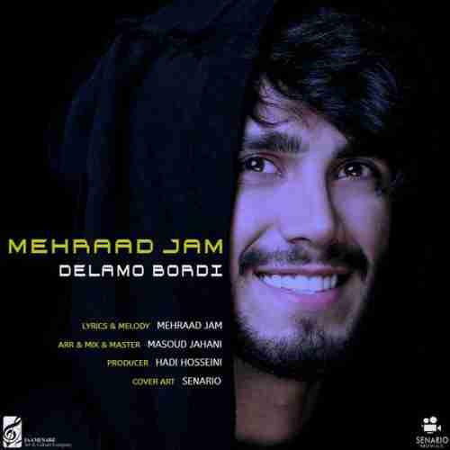 دانلود آهنگ جدید دلمو بردی از مهراد جم